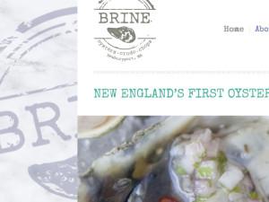 BRINE Website